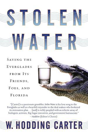 Stolen Water af W. Hodding Carter