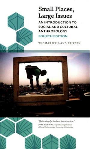 Small Places, Large Issues af Thomas Hylland Eriksen