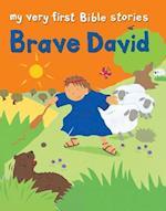 Brave David af Lois Rock, Alex Ayliffe