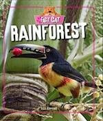Rainforest af Izzi Howell