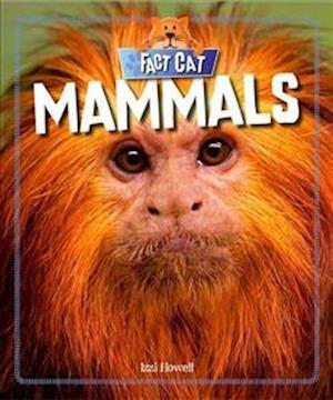 Bog, paperback Mammals af Izzi Howell