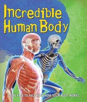 Bog, paperback Fast Facts! Incredible Human Body