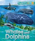 Whales and Dolphins (Explorers)