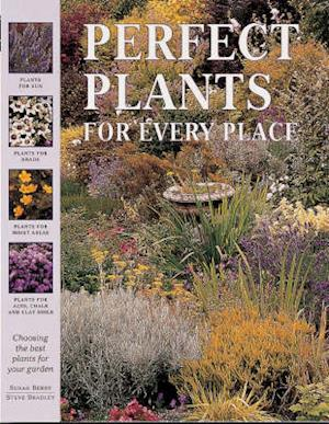 Bog, paperback Perfect Plants for Every Place af Susan Berry