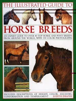 Bog, paperback The Illustrated Guide to Horse Breeds af Judith Draper