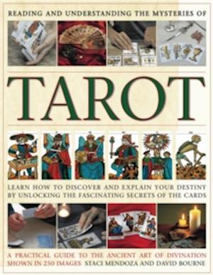 Reading and Understanding the Tarot af Staci Mendoza, David Bourne