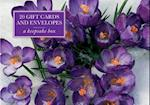Tin Box of 20 Gift Cards and Envelopes: Crocus af Peony Press