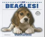 I Like Beagles! af Linda Bozzo