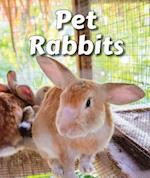 Pet Rabbits (All about Pets Paperback)