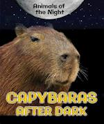 Capybaras After Dark (Animals of the Night)