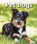 Pet Dogs (All about Pets Paperback)