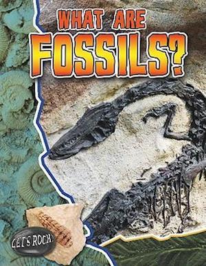 What Are Fossils? af Natalie Hyde