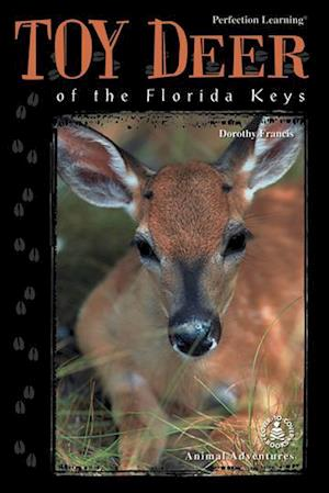 Bog, hardback Toy Deer of the Florida Keys af Dorothy Brenner Francis