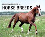 The Ultimate Guide to Horse Breeds