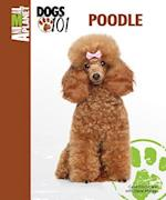 Poodle (Animal Planet Dogs 101)