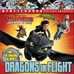 Dragons in Flight af Dreamworks