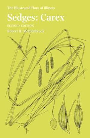 Sedges af Robert H. Mohlenbrock