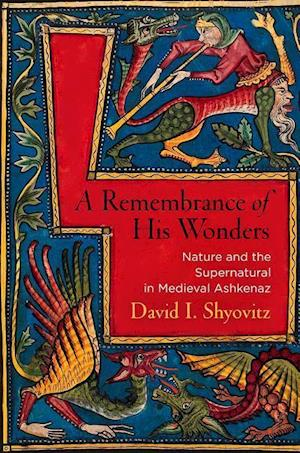 Bog, hardback A Remembrance of His Wonders af David I. Shyovitz