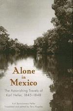 Alone in Mexico af Karl Bartolomeus Heller