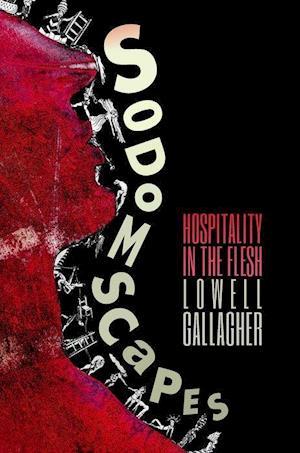 Bog, paperback Sodomscapes af Lowell Gallagher