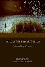Wilderness in America af Henry Bugbee