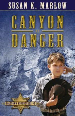 Canyon of Danger af Susan K. Marlow