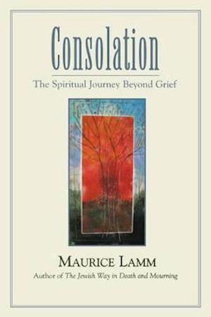 Consolation af Maurice Lamm