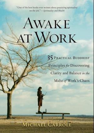Awake at Work af Michael Carroll