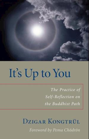 It's Up to You af Dzigar Kongtrul, Helen Berliner