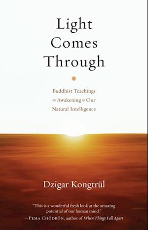 Light Comes Through af Dzigar Kongtrul