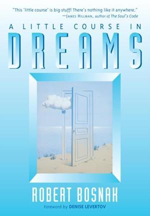 Little Course in Dreams af Robert Bosnak