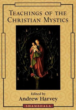Teachings of the Christian Mystics af Andrew Harvey