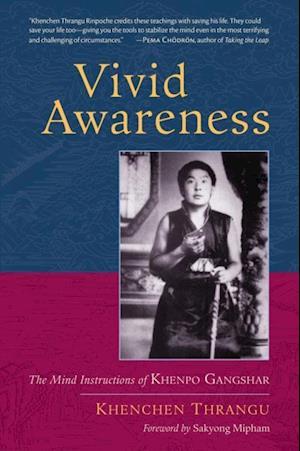 Vivid Awareness af Khenchen Thrangu