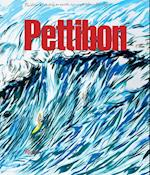 Raymond Pettibon (Rizzoli Classics)