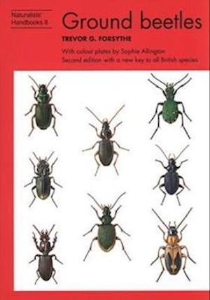 Ground Beetles af Trevor G. Forsythe