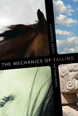 Mechanics of Falling and Other Stories af Catherine Brady