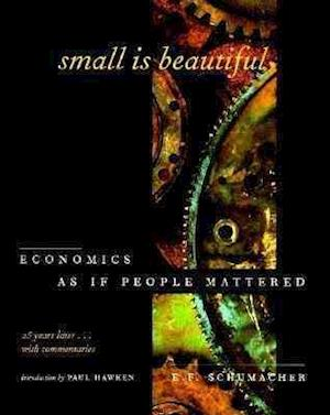 Bog, paperback Small is Beautiful af E F Schumacher