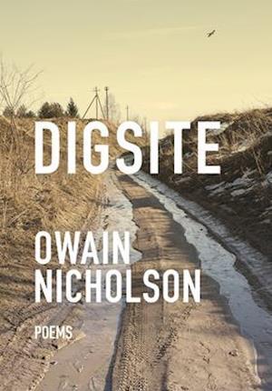 Bog, paperback Digsite af Owain Nicholson