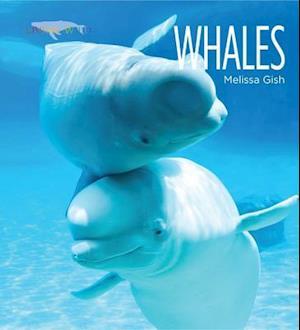 Whales af Melissa Gish