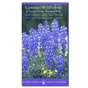 Common Wildflowers of Grand Teton National Park af Charles Craighead