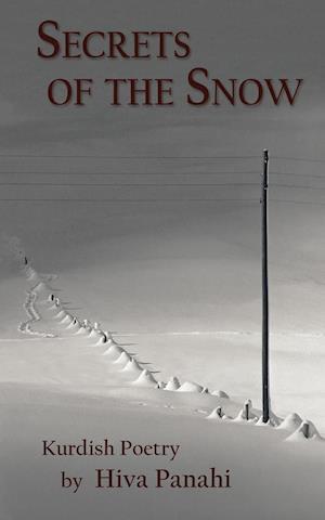 Bog, paperback Secrets of the Snow af Hiva Panahi