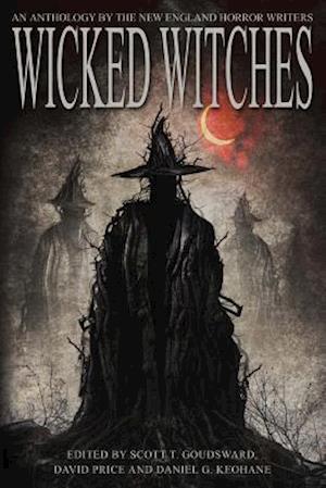 Bog, paperback Wicked Witches af Scott T. Goudsward