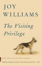 The Visiting Privilege (Vintage Contemporaries)