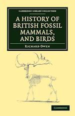 A History of British Fossil Mammals, and Birds af Richard Owen
