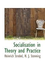 Socialisation in Theory and Practice af H. J. Stenning, Heinrich Strobel