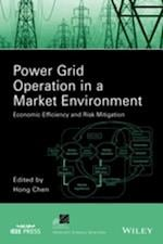 Power Grid Operation in a Market Environment (IEEE Press Series on Power Engineering)