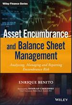 Asset Encumbrance and Balance Sheet Management (Wiley Finance)