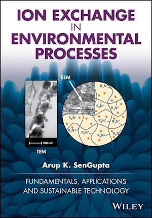 Bog, hardback Ion Exchange in Environmental Processes af Arup K. Sengupta