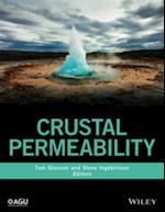 Crustal Permeability (Wiley Works)