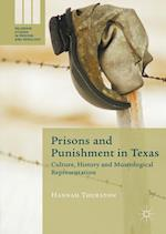 Prisons and Punishment in Texas (Palgrave Studies in Prisons and Penology)